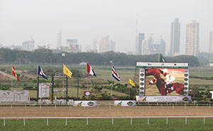 In India horse betting is huge. This is from the racecourse in Mumbai. Photo: Stine Simonsen Puri