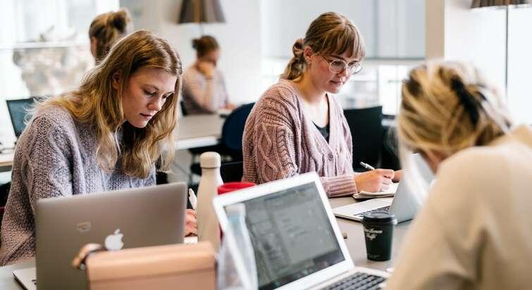 Studerende på Københavns Universitet arbejder sammen